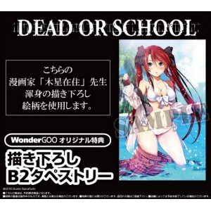 Dead or School Limited Edition [WonderGo...